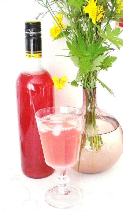 Rabarber- & rödvinbärssaft
