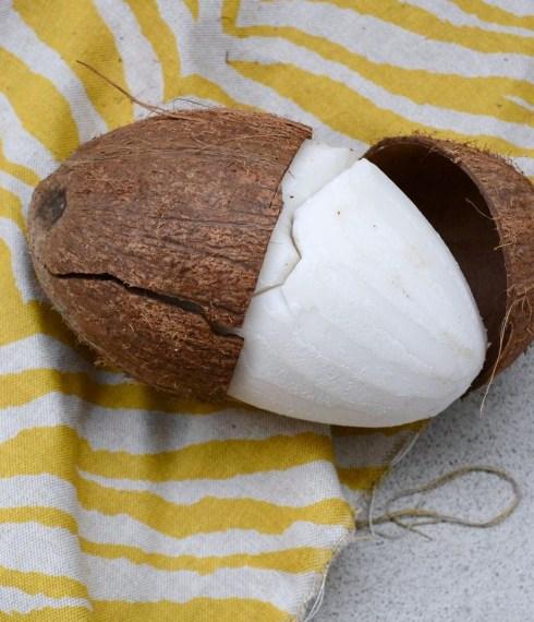 Skala kokos